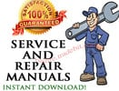 1999 Seadoo Sea Doo Service Repair Manual Download